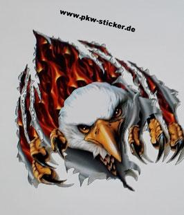 Weißkopfadler mit Feuer