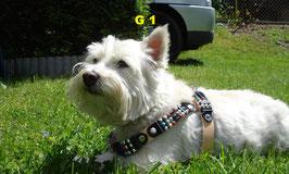 Hundegeschirr - Verzierung - Gitarrengurt