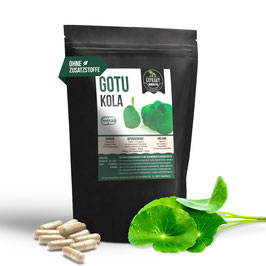 Gotu Kola Extrakt | 120 & 240 Kapseln | 400mg hochdosiertes Extrakt | naturrein - ohne Zusätze | 100% vegan & in Deutschland abgefüllt