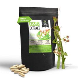 Cissus Quadrangularis Extrakt   40% Ketosterone   120 KAPSELN   400mg hochdosiertes Extrakt   naturrein - ohne Zusätze