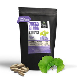 Ginkgo Biloba Extrakt | 6% Ginkgolide 24% Flavones | 120 & 240 KAPSELN | 400mg hochdosiertes 10:1 Extrakt | naturrein - ohne Zusätze