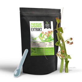 Cissus Quadrangularis Extrakt Pulver   100g & 250g   40% Ketosterone   100% naturrein - ohne Zusätze