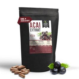 Acai Beere Extrakt KAPSELN | 120 & 240 | vegan & ohne Zusätze | 400mg 10:1 Extrakt
