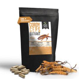 Cordyceps Sinensis EXTRAKT | 30% Polysaccharide | 120 KAPSELN 400mg | ohne Zusatzstoffe  | hochdosiert, vegan, in Deutschland hergestellt