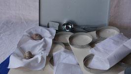 7434 Edelstahlring-Komplettset Tuch für 2 Bleche mit Arbeitswanne