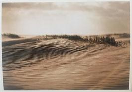 Sandrücken Sylt