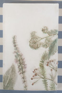 Botanic Art Herbstkraut