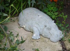 Mittleres Flusspferd