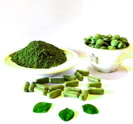 Bio Moringa Teneriffa Tabs 500 mg -  Rohkost Spitzen Qualität - keine Zusatzstoffe - Qualität Made in Germany