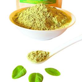 Bio Neem Blattpulver Azadirachta indica in Ayurveda Rohkost Qualität