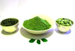 Bio  Moringa  Blatt Pulver Ayurveda Rohkost Qualität aus der Heimat des Moringa Baumes.