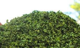 Bio Moringa Blattschnitt / Tee. Rohkost Premium Qualität.  Deutscher Bio Anbau auf Teneriffa