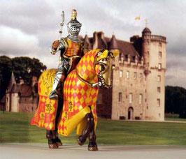 09 CASTLIAN XIII Ritter des Mittelalters Ritterfigur Kreuzritter Altaya DeAgostini Frontline
