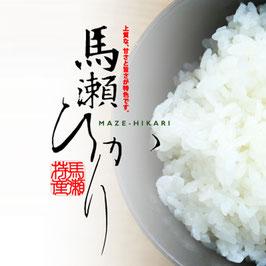 水源米 馬瀬ひかり(コシヒカリ)