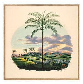 Palmen-Print Palm and Sunset