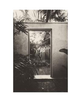 A garden in a garden, Sri Lanka 2016 © Olivia Bonnal Sansoni