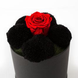 Bollenhutbox mit schwarzen Bollen und roter Rose