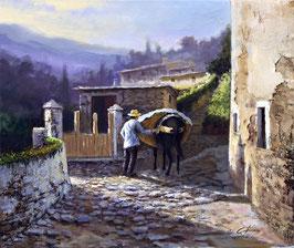 Hombre con mulo por la calle