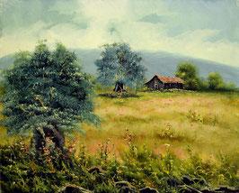 Casa con olivos