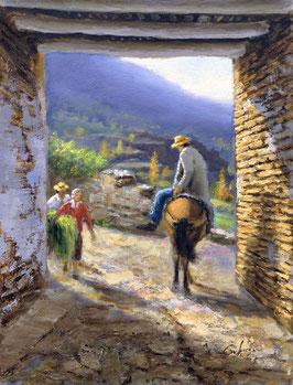 Mulo en el callejón