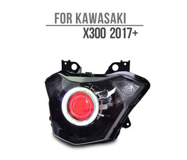 X 300 Headlight