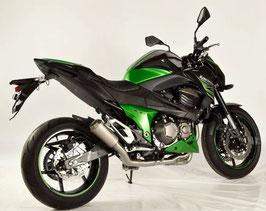 Z800 MotoGP Slip-on