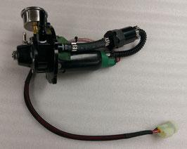 Fuel pump & Regulator upgrade