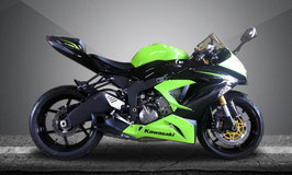 ZX6R WILLY MADE Slip-on