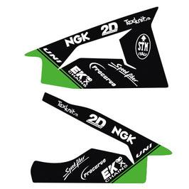 ZX10R 11-15 Swingarm skin
