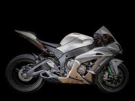 ZX10R WILLY MADE Slip-on
