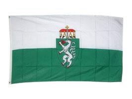 Fahne Steiermark 150x90