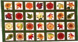 p191 Herbstblätter