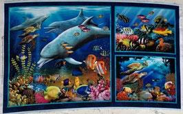 p214 Delfin und Fische