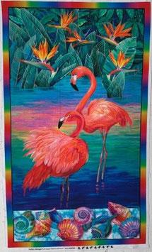 p219 Flamingo