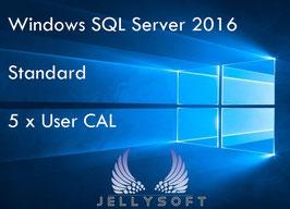 Microsoft SQL Server 2016 Standard USER CAL - 5 USER
