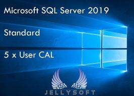 Microsoft SQL Server 2019 Standard - 5 User Cal