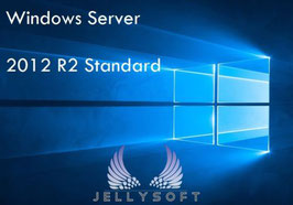 Microsoft Server 2012 R2 für Windows - 64 Bit