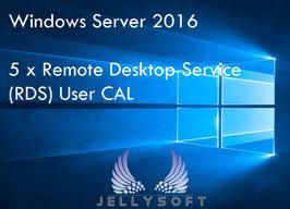 Microsoft Windows Server 2016 RDS USER CAL - 5 Nutzer