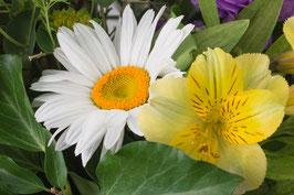 Doppelkarte B6 blütenweiss - Blumenstrauss - P7031752-G