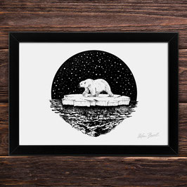 Eisbär | Signierter Druck im Rahmen