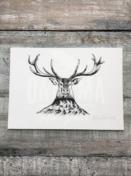 MOUNTAIN DEER | Signed Art Print #43