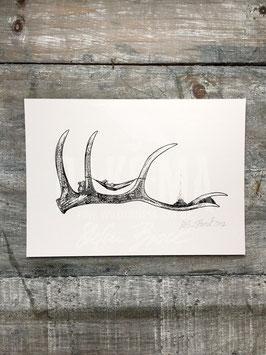 ANTLER HAMMOCK | Signed Art Print #2