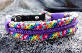 Hundehalsband B 24