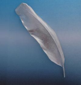 Large Feather Bar Pin    FBP