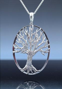 Tree of Life - TOL P C