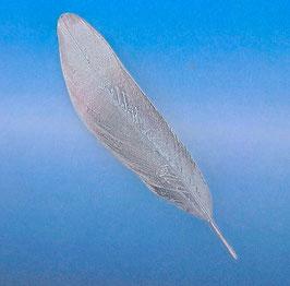 F 2 Medium Feather Bar Pin