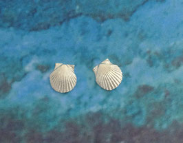 Small Scallop Earring S 10 A ER