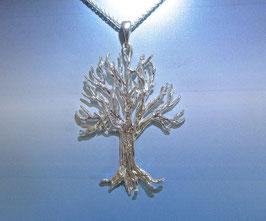 Tree of Life - TOL P