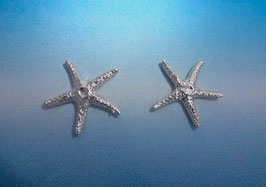 Medium Star Fish Earring  S 13 A