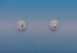 S 5 Nautilus Earrings